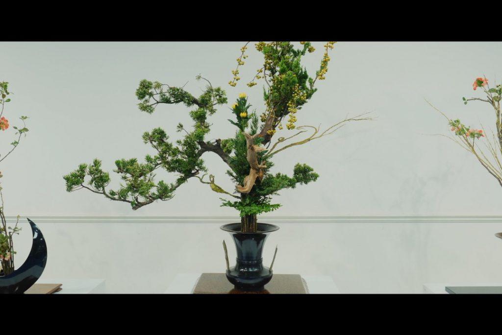 「龍生いけ花様」コンセプトムービー